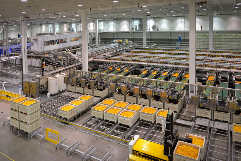 Food Processing Plant ~ Food processing