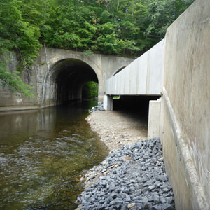 SR 191 Bridge Replacement Inside Stites Tunnel