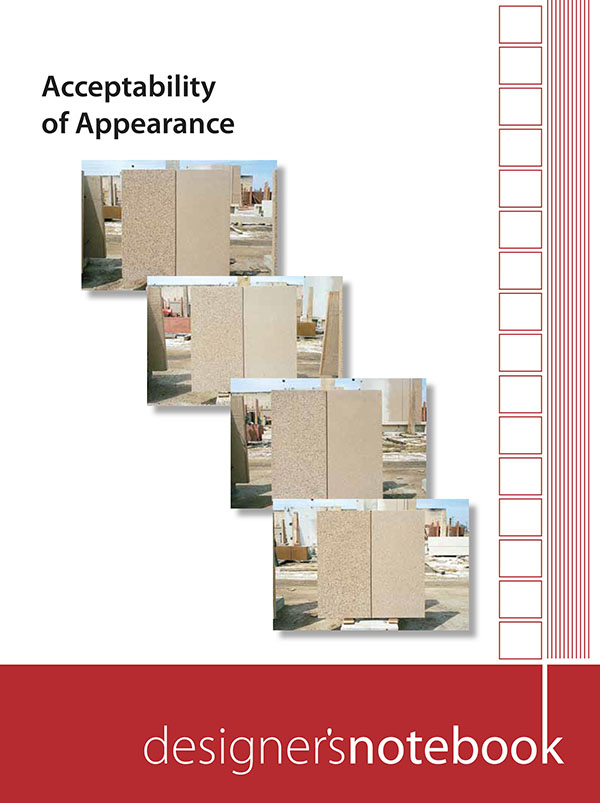 DN-22 Designer's Notebooks: Acceptability of Appearance